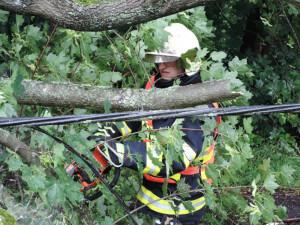 Královéhradecký kraj zasáhl silný vítr, hasiči zaznamenali 30 výjezdů