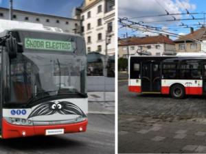 Vozy hradecké MHD budou v listopadu jezdit s knírem. Jedná se o podporu projektu Movember