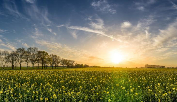 POČASÍ NA ÚTERÝ: Oblačno až polojasno, teploměr ukáže i 21 stupňů
