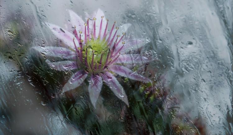 POČASÍ NA STŘEDU: Převážně zataženo, během dne ojediněle občasný déšť nebo přeháňky