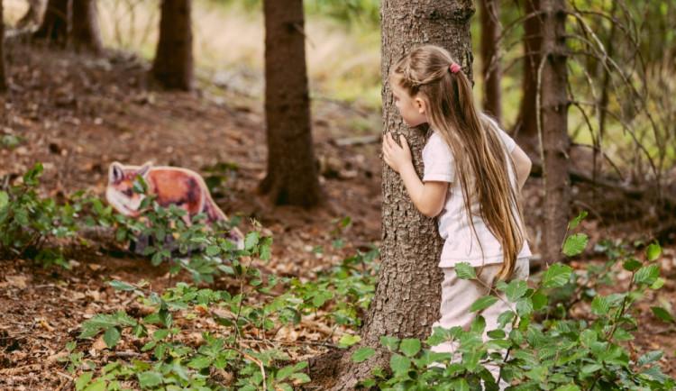 Lesní svět vrací děti i dospělé do přírody. Stezky mají letní premiéru