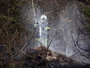 Meteorologové varují před požáry. Pozor na ohně i nedopalky cigaret