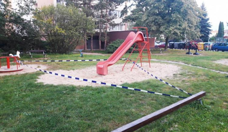 Někdo zahrabal kočku na dětském hřišti, přímo u klouzačky