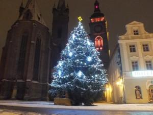 Hradec už má všechny tři vánoční stromy na svém místě. Město do vánoční výzdoby investuje 700 tisíc