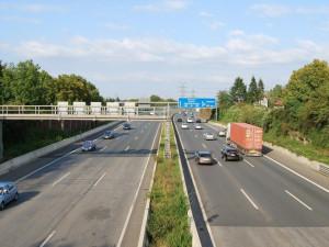 Pobíhající prase překvapilo řidiče na dálnici D11. Do zvířete nabouralo hned několik aut