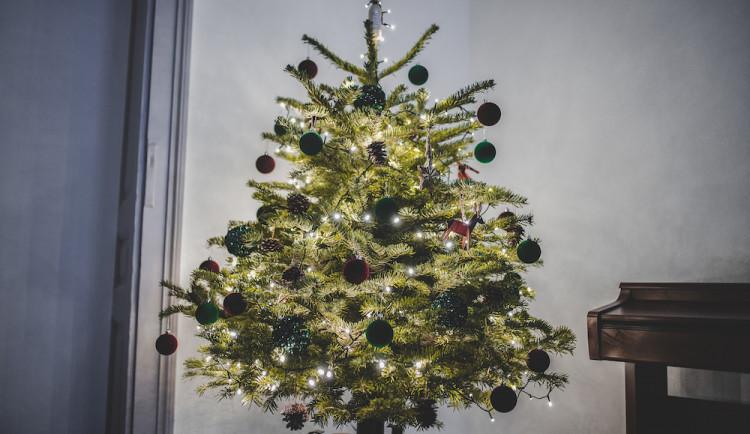 SOUTĚŽ: Vánoce jsou tady. Ukaž stromek a vyhraj ceny od Drbny