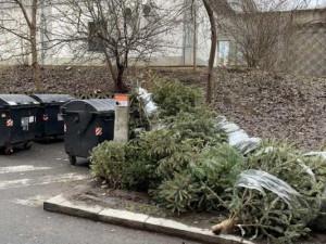 Vánoce jsou pryč. Z náměstí Hradce Králové zmizí vánoční stromy