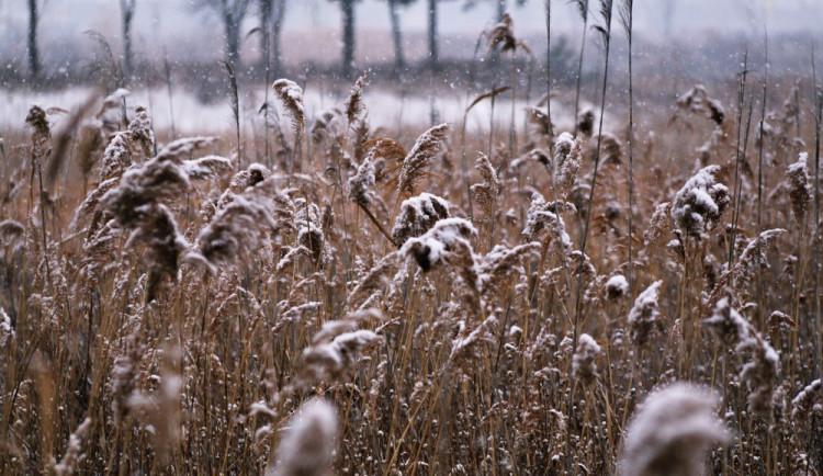 POČASÍ NA SOBOTU: Ráno pozor na mrznoucí mlhy, odpoledne se budou teploty držet kolem nuly