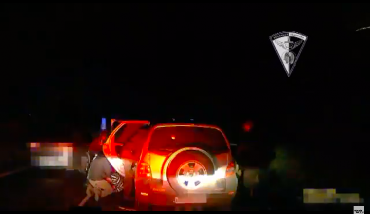 VIDEO: Zásahová jednotka zatkla dva cizince. Jezdili do Královéhradeckého kraje krást