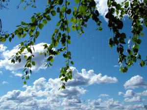 POČASÍ NA SOBOTU: Jarní teploty do 11 stupňů sdeštěm