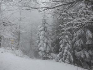 Hřebenové túry v Krkonoších dnes vynechejte. Horská služba je kvůli silnému větru a špatně viditelnosti nedoporučuje