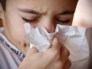Epidemie chřipky v Královéhradeckém kraji stagnuje. Zatím na ní zemřeli tři lidé