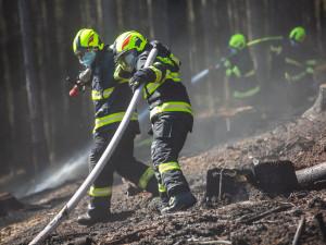 Lesníci čekají o víkendu nápor výletníků. Varují před požáry