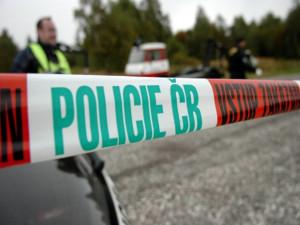 16 let vězení za vraždu novorozence, rozhodl soud v Hradci Králové