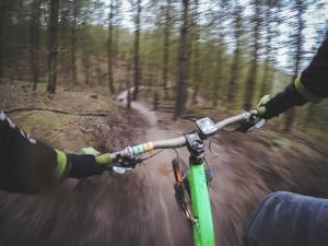 Městské lesy vystaví oficiální trailové tratě pro cyklisty, ty současné nebyly povolené. Část z nich ale zůstane zachována