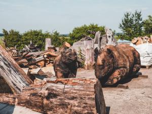 Stezku korunami stromů Krkonoše zdobí dřevěný nosorožec
