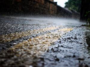 Letošní červen byl nejdeštivější za posledních 60 let. Situace kolem sucha se zlepšila