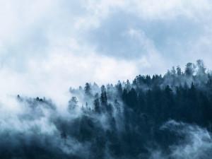POČASÍ NA NEDĚLI: Mírné oteplení, přeháňkám se ale nevyhneme