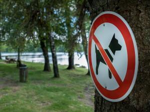 Na Stříbrňáku už se psi nevykoupou, v areálu smí být navíc pouze na vodítku