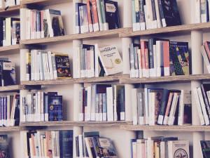 Malé knihovny v Královéhradeckém kraji dostanou šanci. A taky deset milionu korun