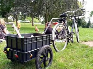 Od konce července po Hradci Králové a okolí putuje pojízdná cykloknihovna