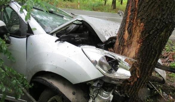 FOTO: Rychlou jízdu na mokru ukončil až strom vedle silnice. Řidič je v nemocnici