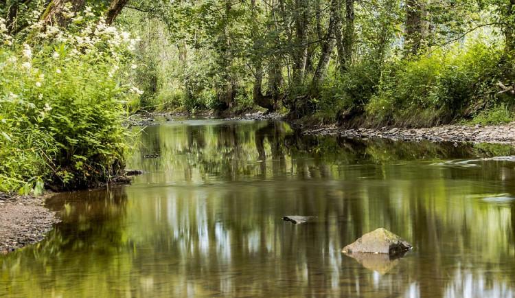 Lesy České republiky vybudovaly na Trutnovsku nádrž na zadržování vody