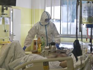 (NE)OBYČEJNÍ: Jako studenta medicíny mě nic takového nenapadlo, říká primář Kliniky infekčních nemocí Fakultní nemocnice Hradec Králové
