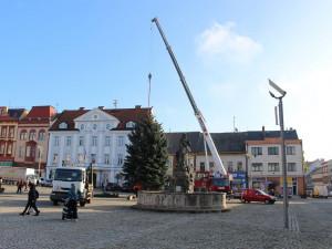 Dvůr ruší slavnostní rozsvícení vánočního stromu s ohňostrojem a celodenním jarmarkem