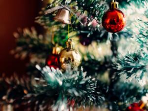 V Náchodě rozsvítí vánoční strom pouze online