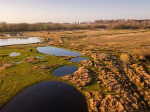 Ptačí park Josefovské louky se rozroste. Jaroměř poskytla nové pozemky pro jeho rozšíření