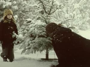 Stromy v hradeckých lesích hlídají před Vánocemi městští policisté i fotopasti