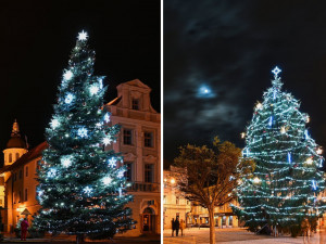 ANKETA: Je hezčí strom na Velkém nebo Masarykově náměstí?