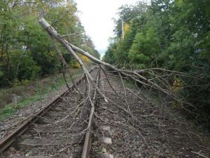 Část východních Čech zasáhne dnes a zítra silný vítr. Mnohde bude mít i sílu vichřice