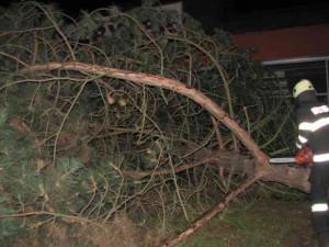 Královéhradecký kraj zasáhl silný vítr, stovky domácností byly bez elektřiny