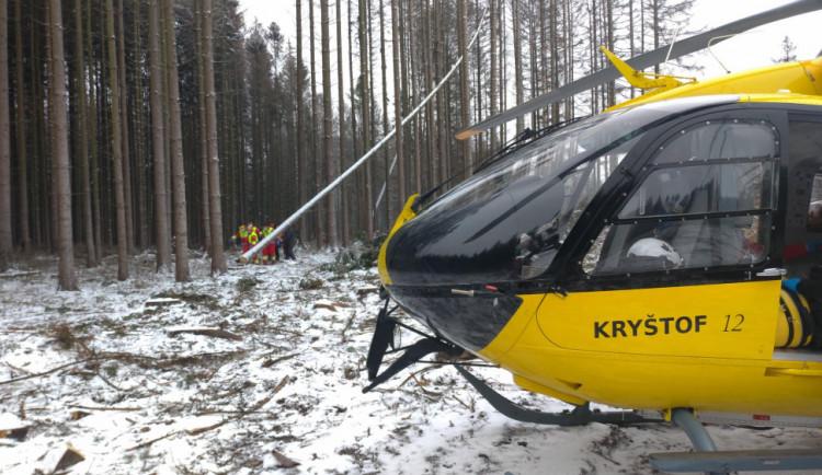 Na mladého muže spadl v Orlických horách při kácení strom. Lékař už jen mohl konstatovat smrt