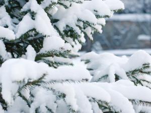POČASÍ NA SOBOTU: Teploty pod nulou, místy sníh