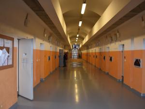 Koronavirus řádí v pardubické věznici. Mají už více než 170 nemocných, spekuluje se o britské mutaci