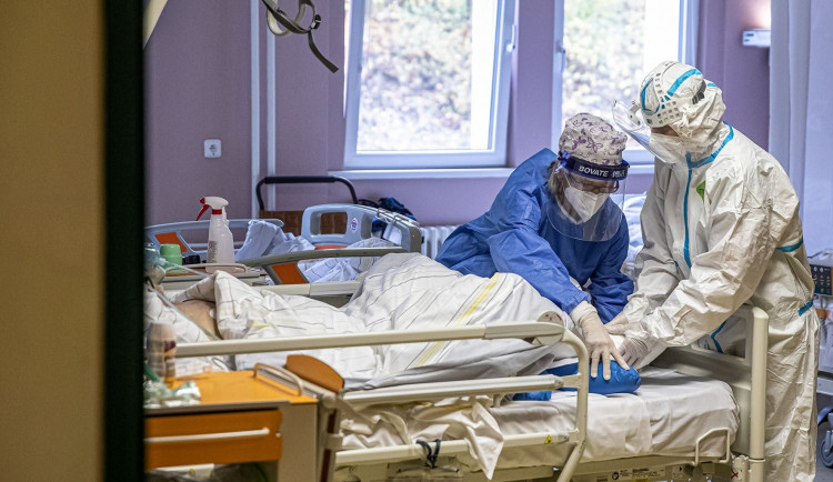 U 60 procent testovaných vzorků z Trutnovska je potvrzena britská verze viru