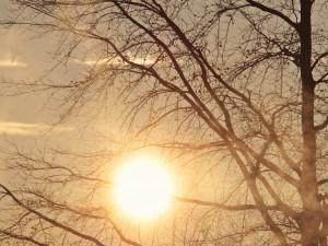 POČASÍ NA SOBOTOU: Oblačno, teploty kolem šesti stupňů