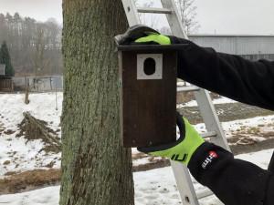 Trutnov po městě rozmístil další ptačí a netopýří budky. Dal za ně přes 90 tisíc korun