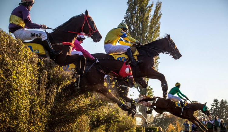 Legendární Taxisův příkop bude pro koně i jezdce bezpečnější, projde výraznými úpravami