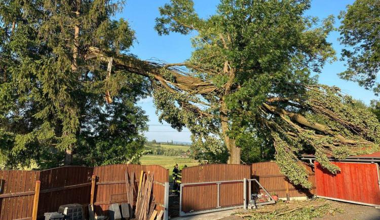 Meteorologové vydávají varování před silným větrem. Během soboty bude platit i pro část kraje