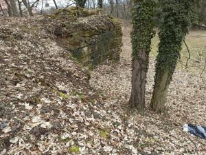 Žena z Rychnovska nedorazila do práce, policisté ji našli pod skalním převisem