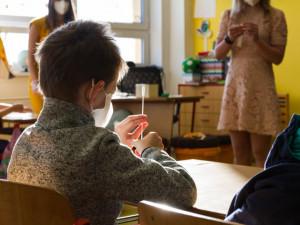 Testovací sady ve školách jsou nekvalitní, upozorňuje kraj. PCR testování odhalilo několik chybných výsledků