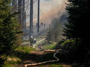 Požár u Sněžného likvidovalo 20 jednotek hasičů, pomáhali i kolegové z Polska