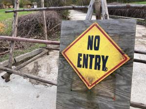 V sobotu se otevírá safari ve Dvoře Králové. Platit budou přísná pravidla