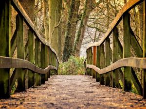 Park se zámkem v Lázních Bělohrad čeká rekonstrukce. Nejdřív je třeba získat dotaci