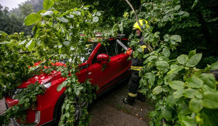Bouře na Hradecku lámala stromy. Přívalový déšť zatopil sklepy