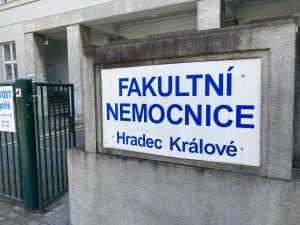 Hradecká nemocnice rozšiřuje dobrovolnický program. Jeho členové tráví volný čas s pacienty